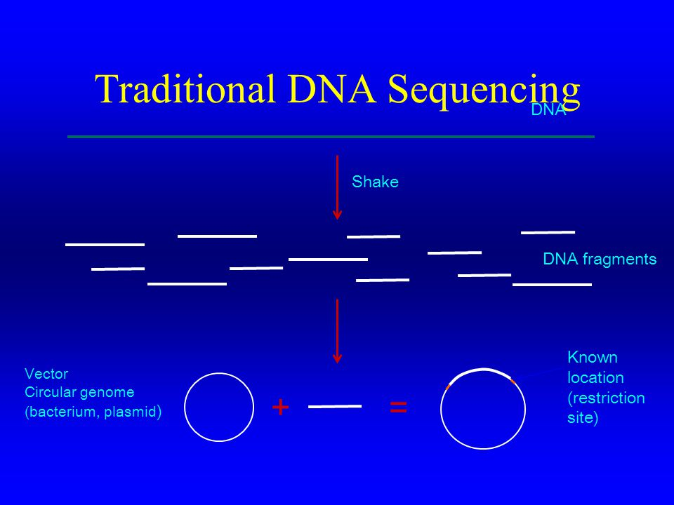 Traditional DNA Sequencing