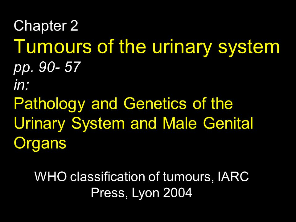 WHO classification of tumours, IARC Press, Lyon 2004