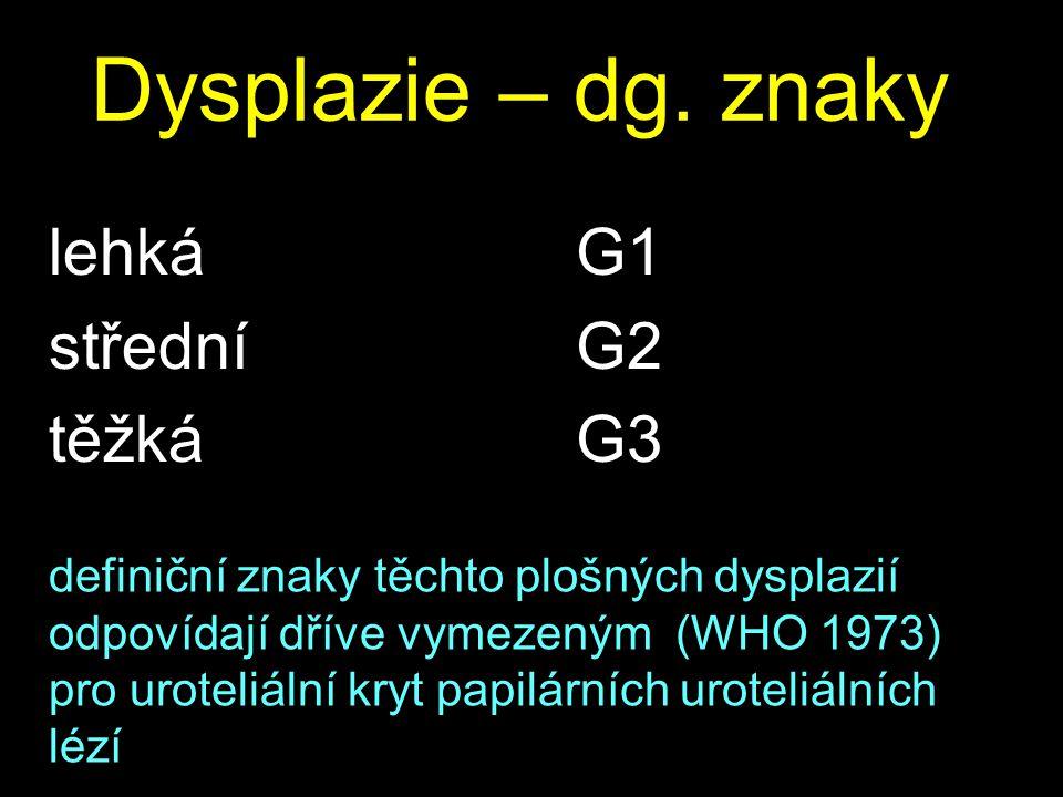 Dysplazie – dg. znaky lehká střední těžká G1 G2 G3