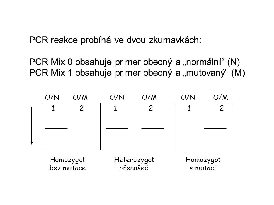 """PCR Mix 0 obsahuje primer obecný a """"normální (N)"""