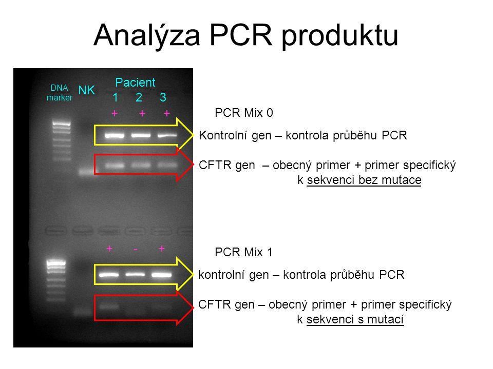 Analýza PCR produktu Kontrolní gen – kontrola průběhu PCR