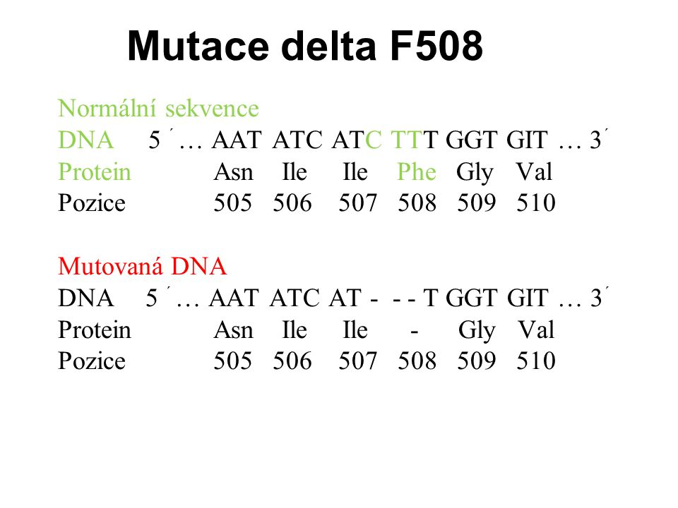 Mutace delta F508 Normální sekvence