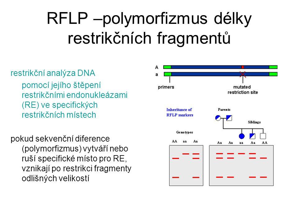 RFLP –polymorfizmus délky restrikčních fragmentů