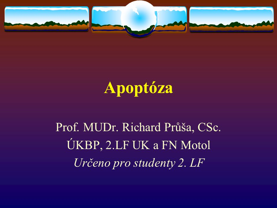 Prof. MUDr. Richard Průša, CSc.