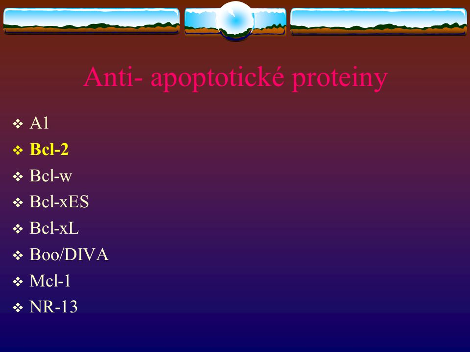 Anti- apoptotické proteiny