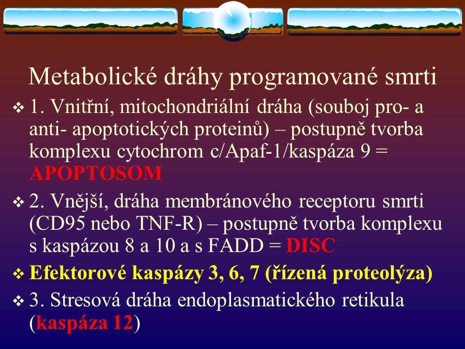 Metabolické dráhy programované smrti