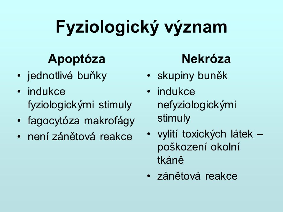 Fyziologický význam Apoptóza Nekróza jednotlivé buňky