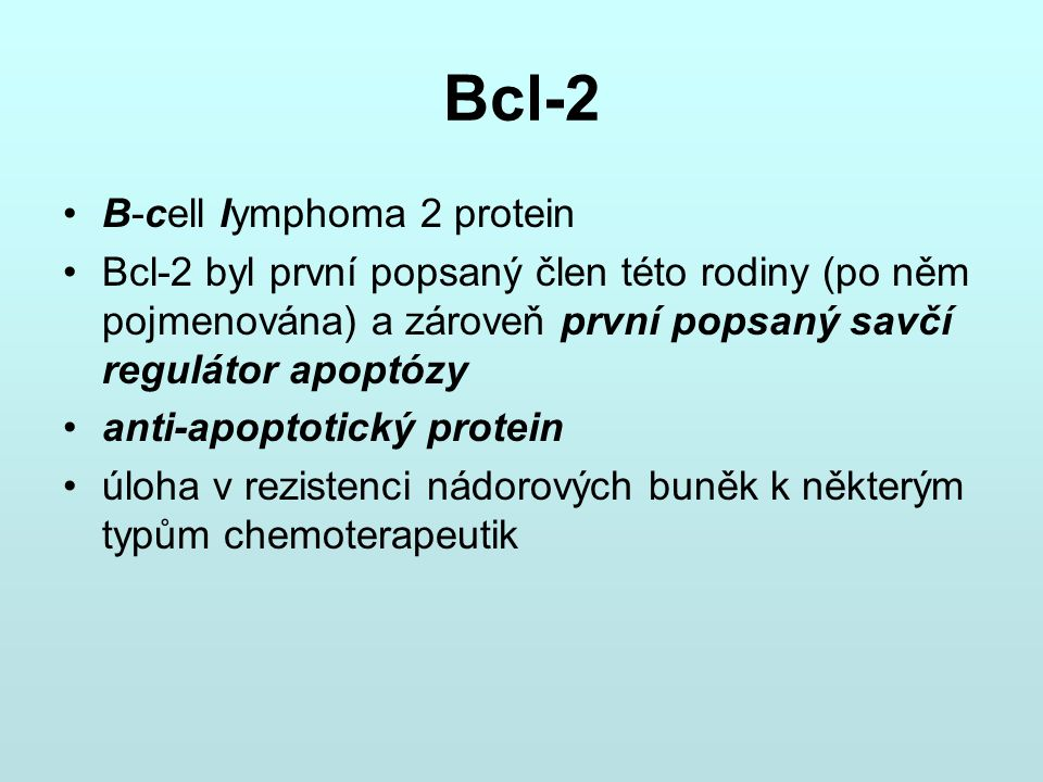 Bcl-2 B-cell lymphoma 2 protein