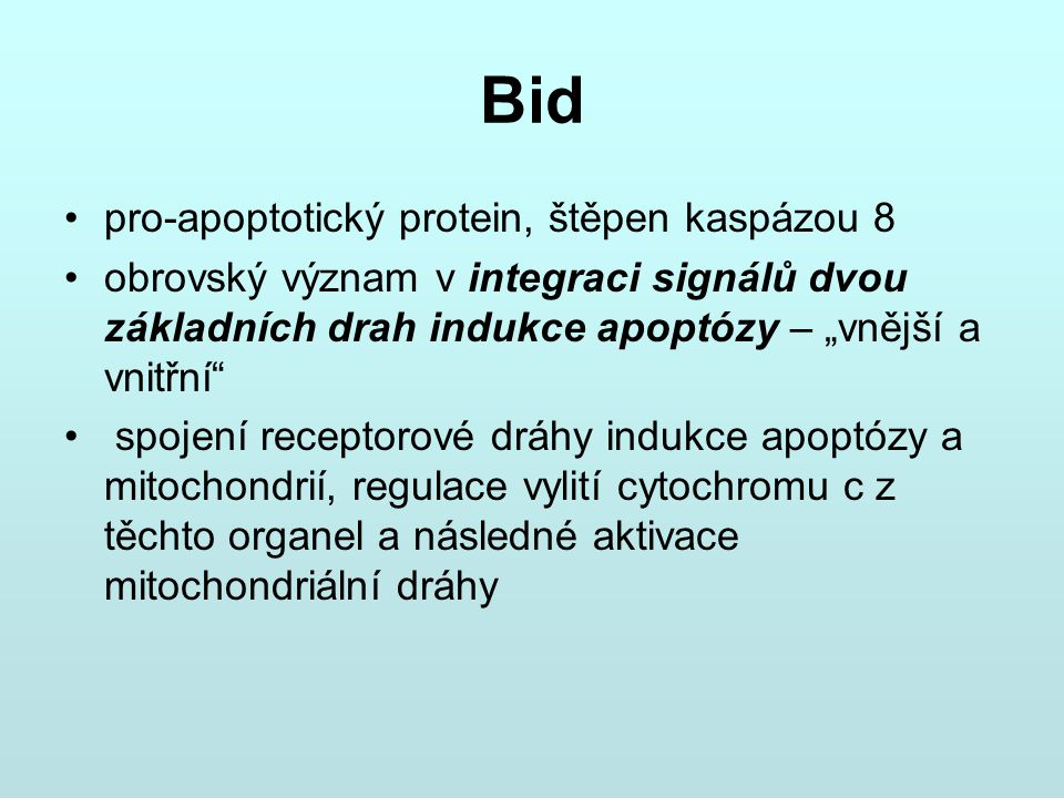 Bid pro-apoptotický protein, štěpen kaspázou 8