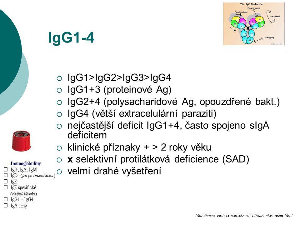 IgG1-4 IgG1>IgG2>IgG3>IgG4 IgG1+3 (proteinové Ag)