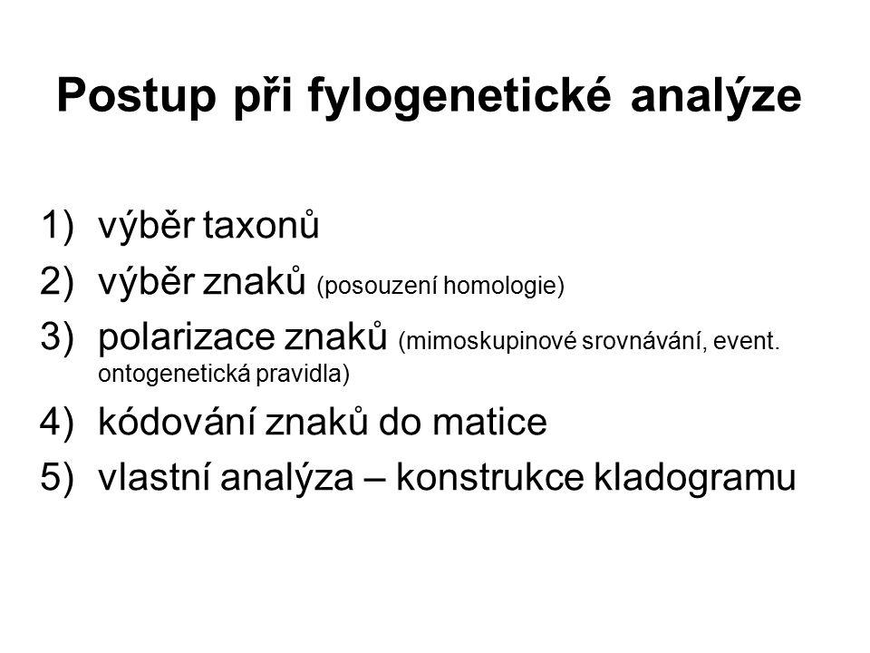 Postup při fylogenetické analýze