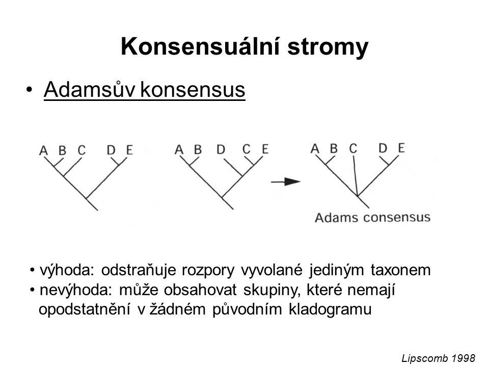 Konsensuální stromy Adamsův konsensus
