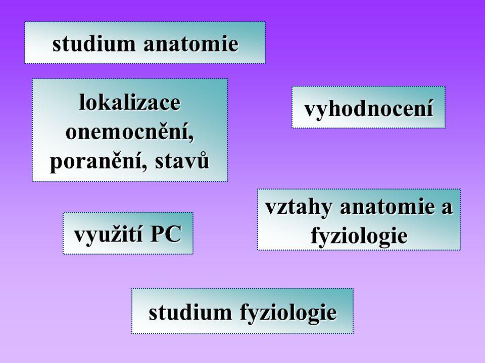 lokalizace onemocnění, poranění, stavů vztahy anatomie a fyziologie