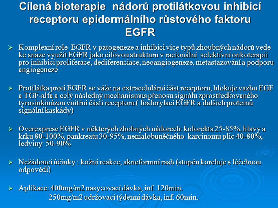 Cílená bioterapie nádorů protilátkovou inhibicí receptoru epidermálního růstového faktoru EGFR