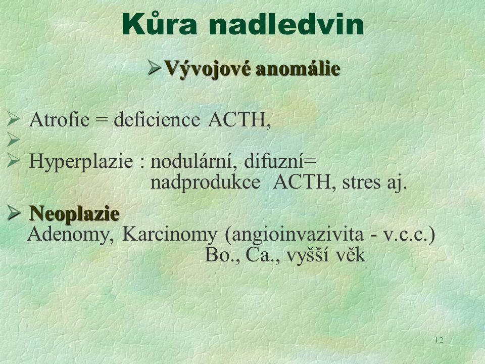 Kůra nadledvin Vývojové anomálie Atrofie = deficience ACTH,