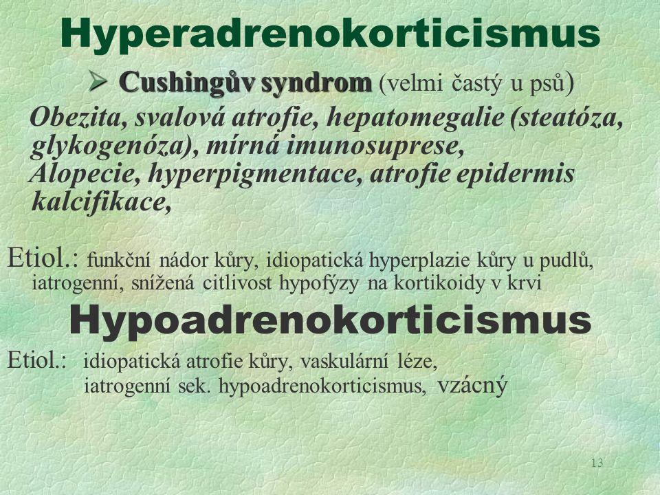 Hyperadrenokorticismus