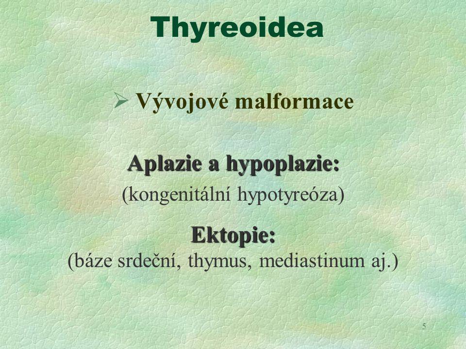 Thyreoidea Vývojové malformace Aplazie a hypoplazie: Ektopie: