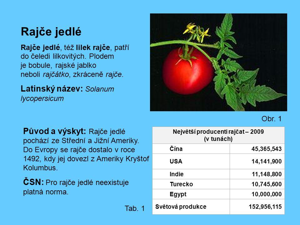 Největší producenti rajčat – 2009 (v tunách)