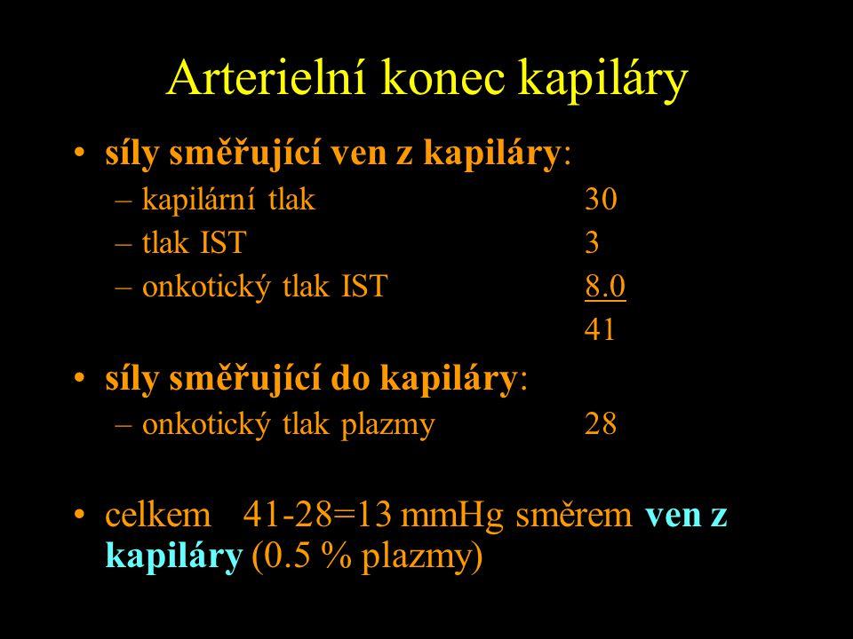 Arterielní konec kapiláry
