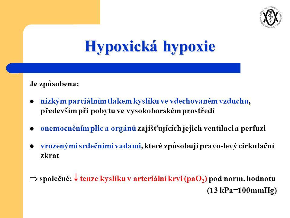 Hypoxická hypoxie Je způsobena: