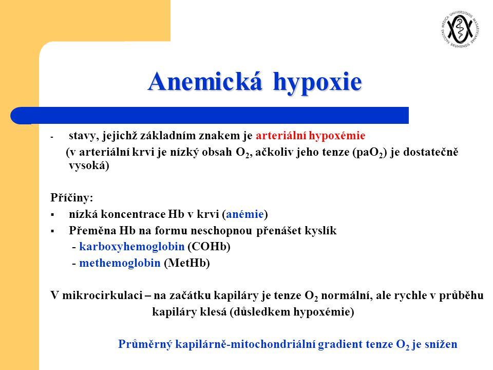 Anemická hypoxie stavy, jejichž základním znakem je arteriální hypoxémie.