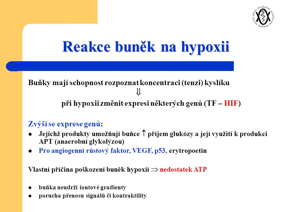 Reakce buněk na hypoxii