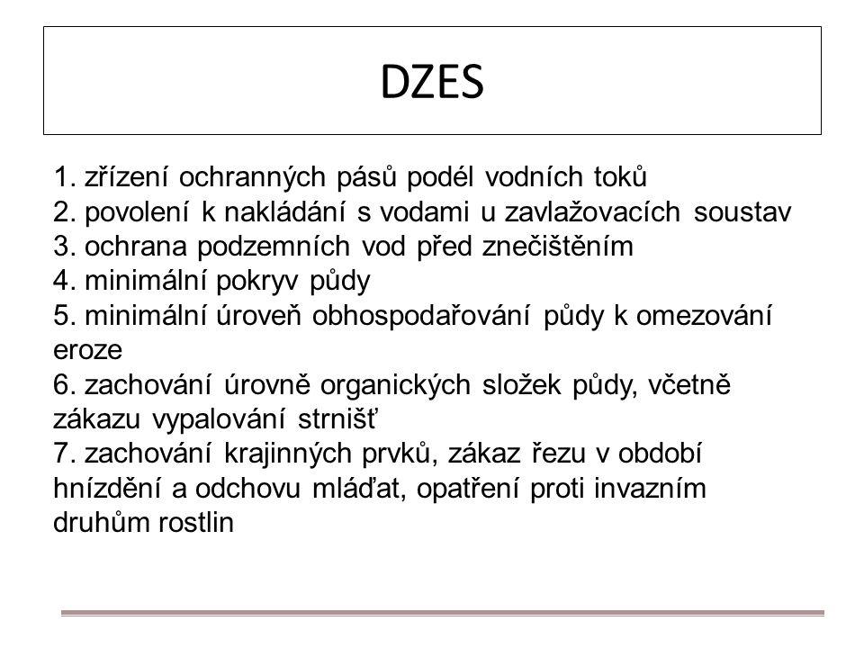 DZES 1. zřízení ochranných pásů podél vodních toků