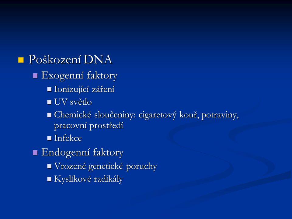 Poškození DNA Exogenní faktory Endogenní faktory Ionizující záření