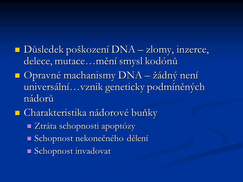 Charakteristika nádorové buňky