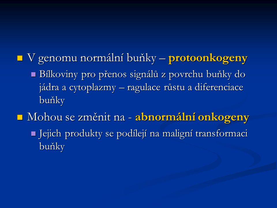 V genomu normální buňky – protoonkogeny