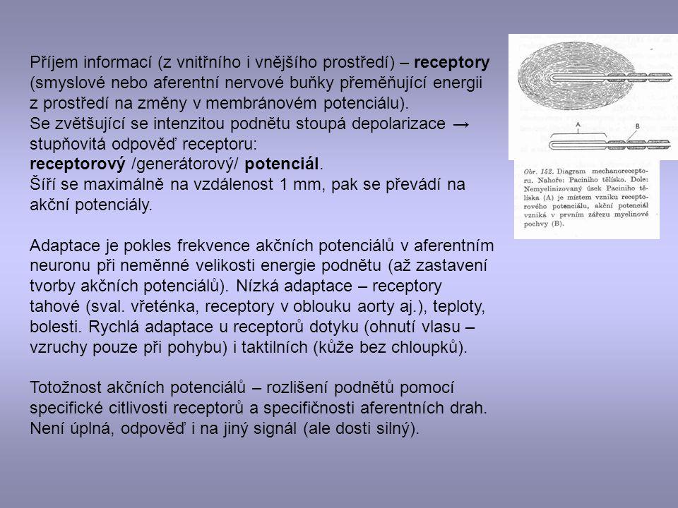 Příjem informací (z vnitřního i vnějšího prostředí) – receptory (smyslové nebo aferentní nervové buňky přeměňující energii z prostředí na změny v membránovém potenciálu).
