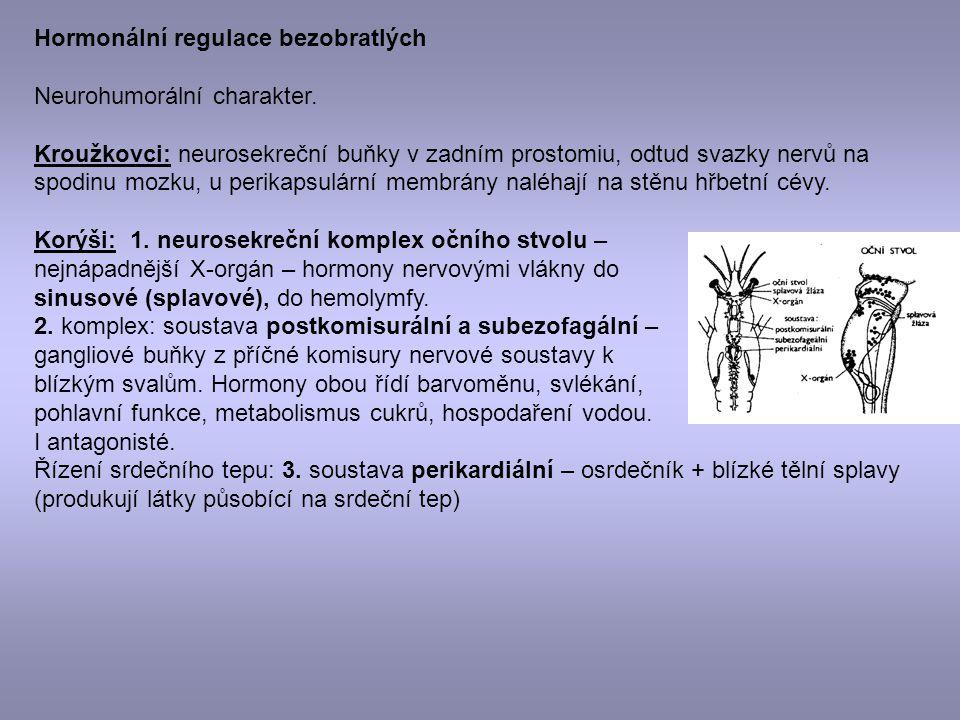 Hormonální regulace bezobratlých