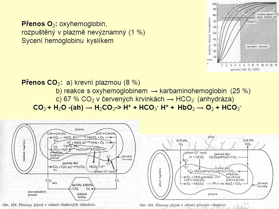 CO2 + H2O -(ah) → H2CO3-> H+ + HCO3- H+ + HbO2 → O2 + HCO3-