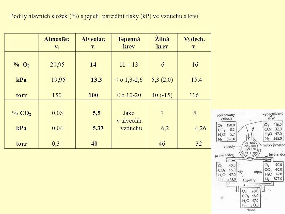 Podíly hlavních složek (%) a jejich parciální tlaky (kP) ve vzduchu a krvi