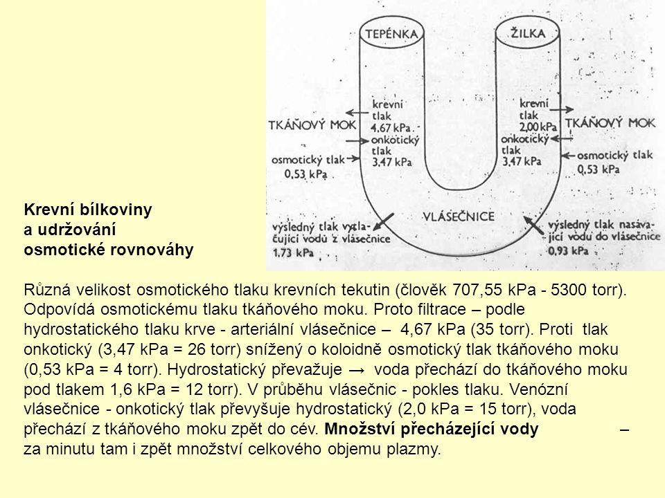 Krevní bílkoviny a udržování. osmotické rovnováhy.