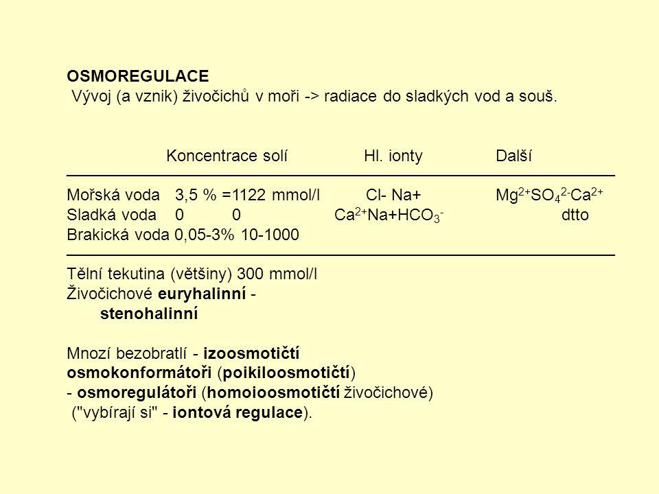 OSMOREGULACE Vývoj (a vznik) živočichů v moři -> radiace do sladkých vod a souš. Koncentrace solí Hl. ionty Další.