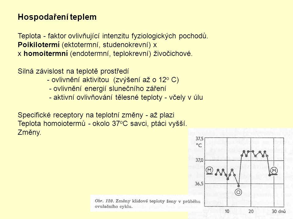 Hospodaření teplem Teplota - faktor ovlivňující intenzitu fyziologických pochodů. Poikilotermí (ektotermní, studenokrevní) x.