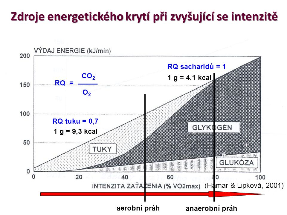 Zdroje energetického krytí při zvyšující se intenzitě
