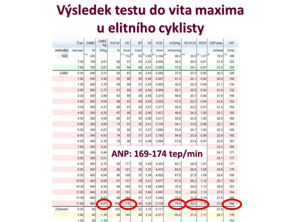 Výsledek testu do vita maxima