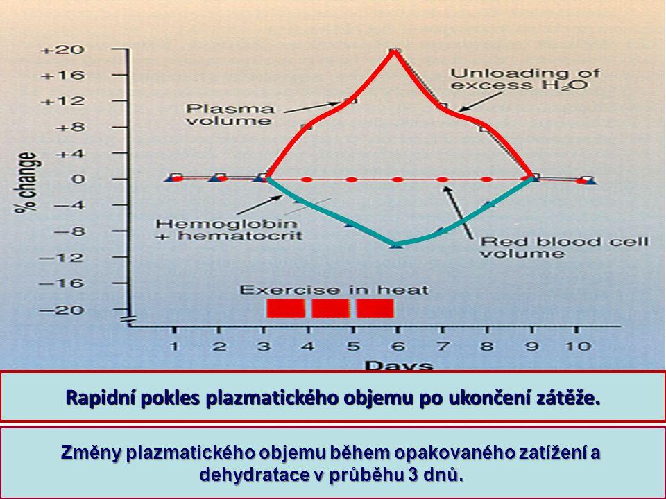 Rapidní pokles plazmatického objemu po ukončení zátěže.