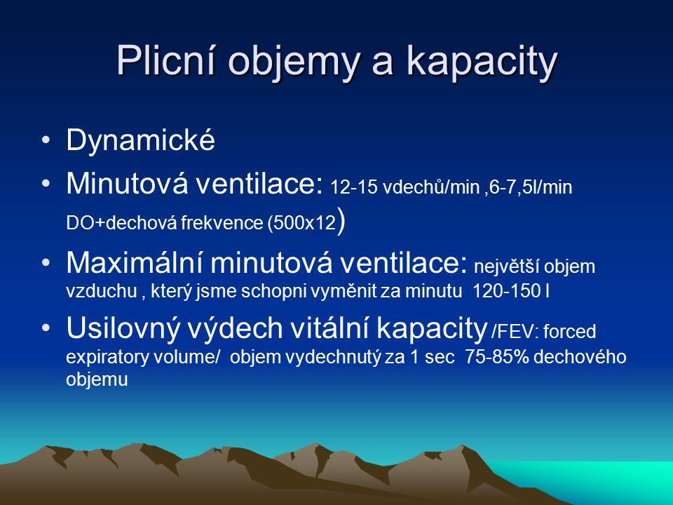 Plicní objemy a kapacity