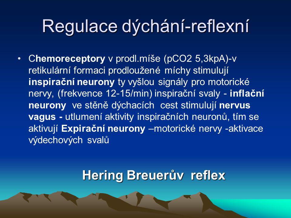 Regulace dýchání-reflexní
