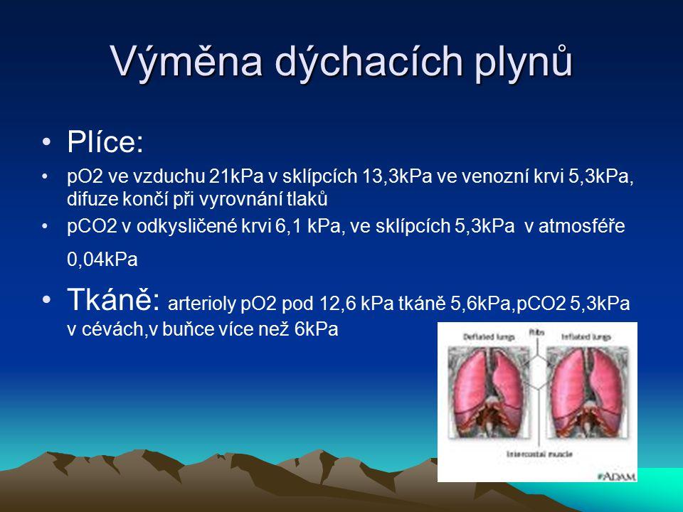 Výměna dýchacích plynů