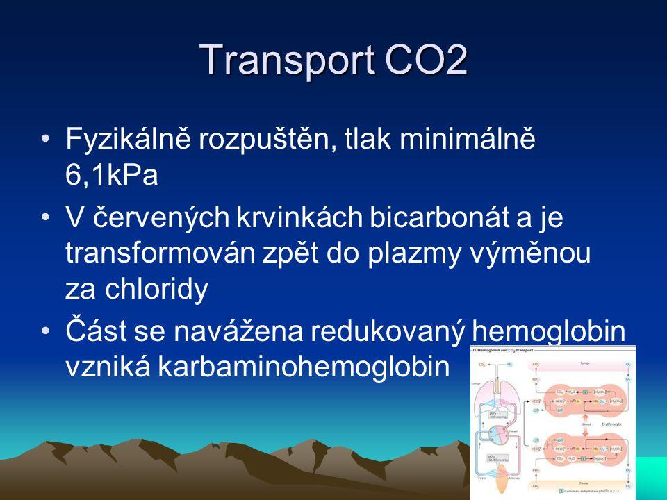 Transport CO2 Fyzikálně rozpuštěn, tlak minimálně 6,1kPa