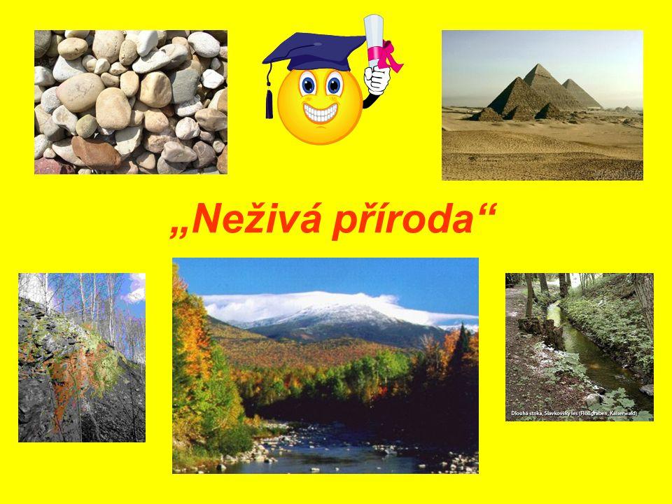 """""""Neživá příroda"""