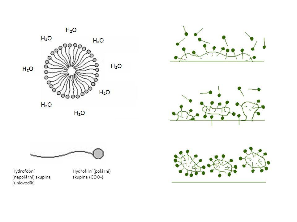 Hydrofobní (nepolární) skupina (uhlovodík)