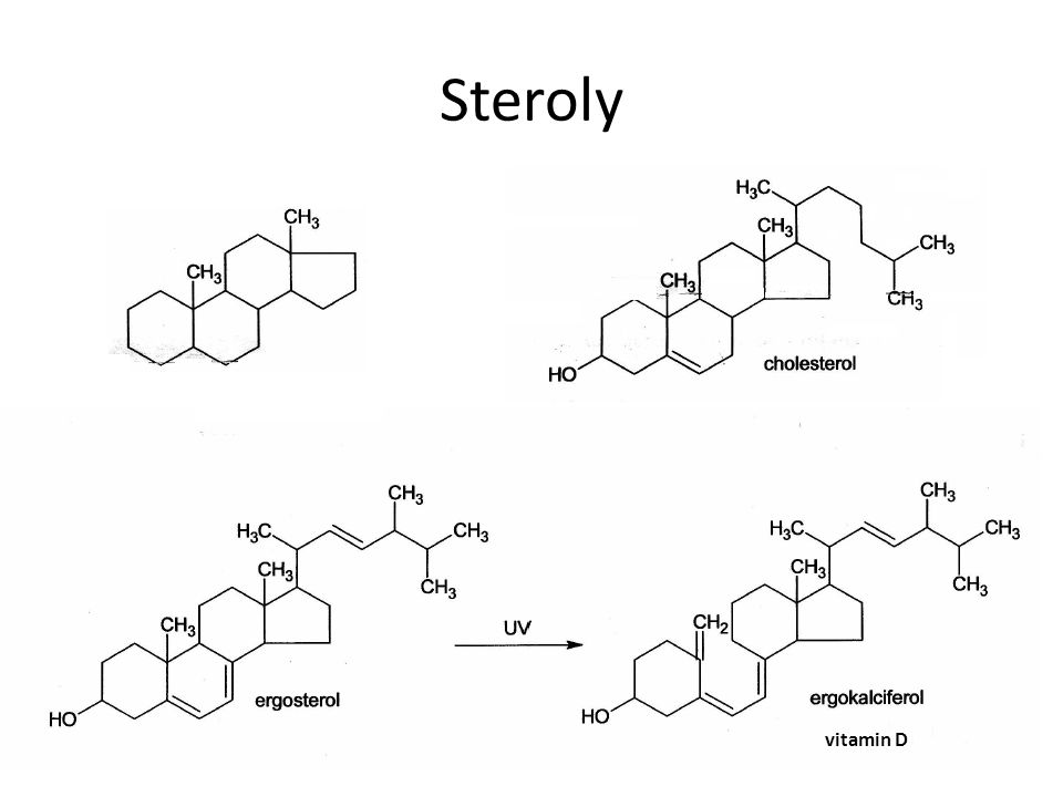 Steroly vitamin D