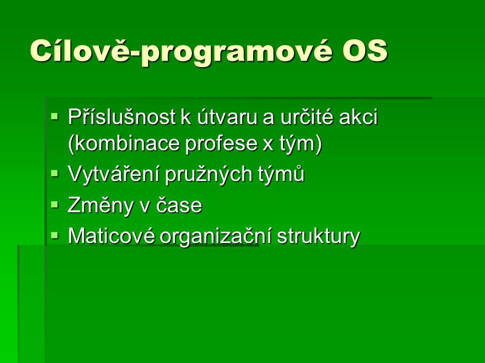 Cílově-programové OS Příslušnost k útvaru a určité akci (kombinace profese x tým) Vytváření pružných týmů.
