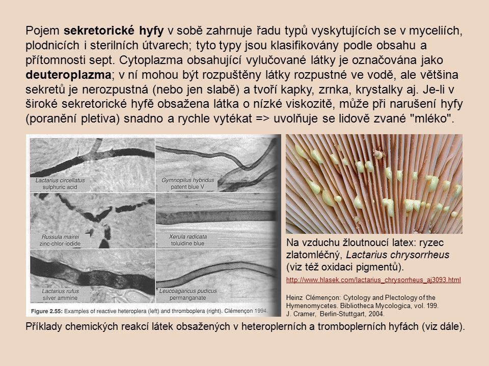 Pojem sekretorické hyfy v sobě zahrnuje řadu typů vyskytujících se v myceliích, plodnicích i sterilních útvarech; tyto typy jsou klasifikovány podle obsahu a přítomnosti sept. Cytoplazma obsahující vylučované látky je označována jako deuteroplazma; v ní mohou být rozpuštěny látky rozpustné ve vodě, ale většina sekretů je nerozpustná (nebo jen slabě) a tvoří kapky, zrnka, krystalky aj. Je-li v široké sekretorické hyfě obsažena látka o nízké viskozitě, může při narušení hyfy (poranění pletiva) snadno a rychle vytékat => uvolňuje se lidově zvané mléko .