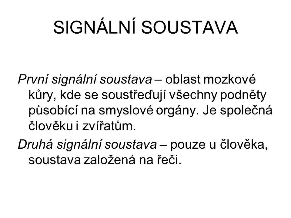 SIGNÁLNÍ SOUSTAVA